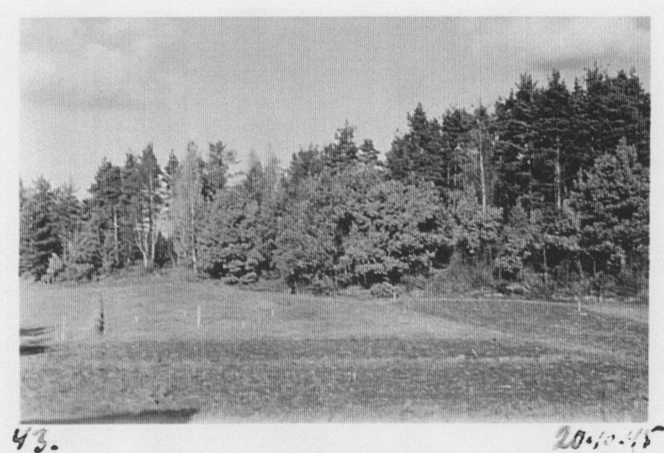 Ennen rakentamista 20.10.1945