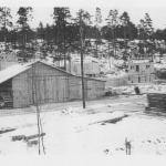 27.1.1946